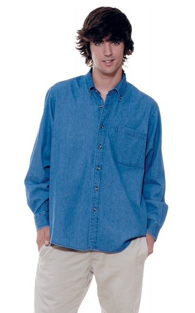 camisa LION